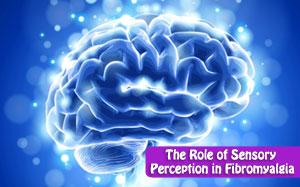 The Role of Sensory Perception in Fibromyalgia