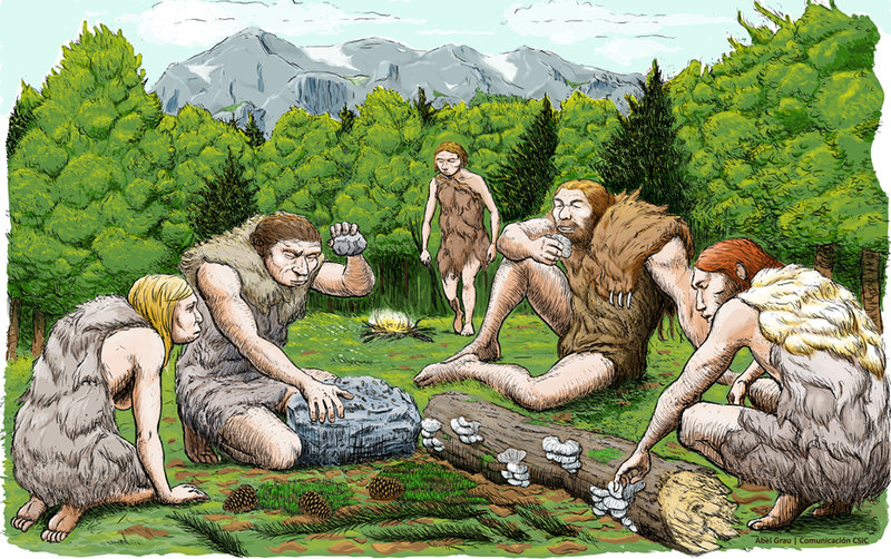 Neanderthals were vegetarian– and probably kissed early humans