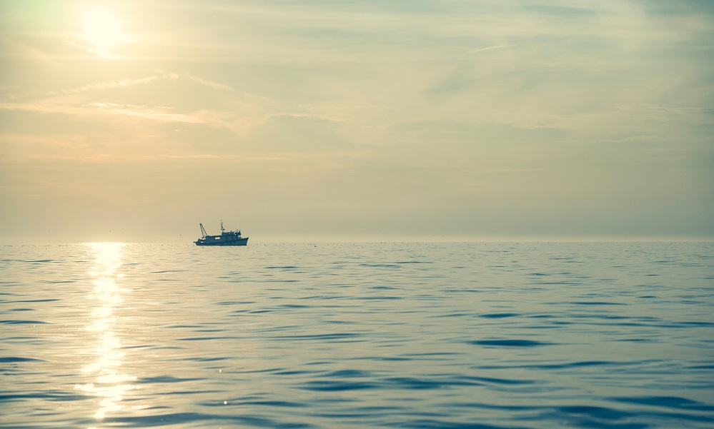 New study shows our oceans are heating rapidly