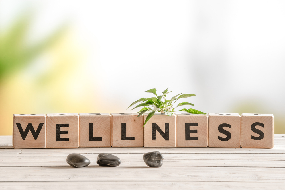 Wellness Maintenance: Staying Physically and Emotionally Well with Fibro