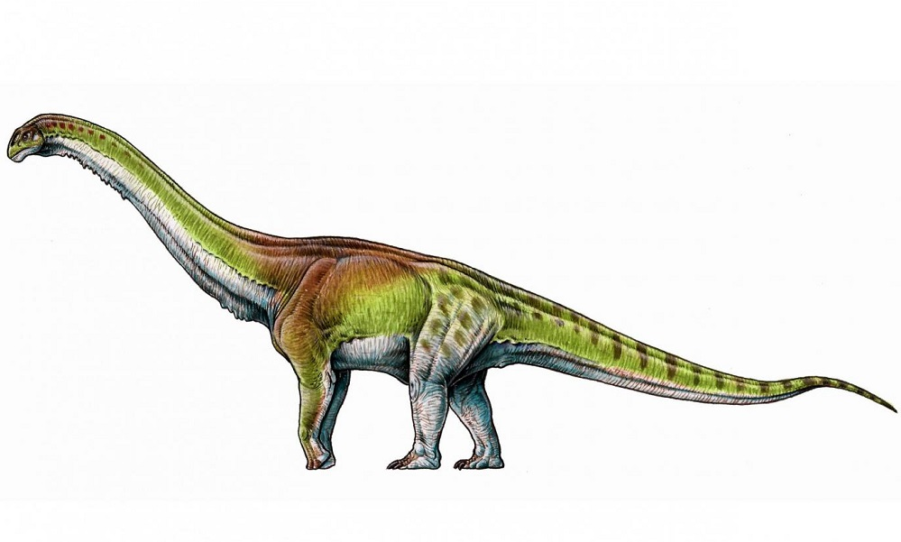 Meet Patagotitan– the biggest dinosaur ever known