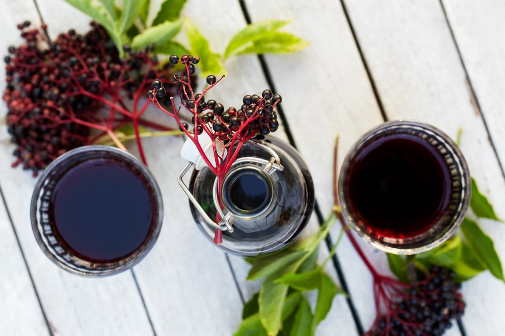 How Long Does Elderberry Syrup Last in the Fridge? Elderberry Q&A