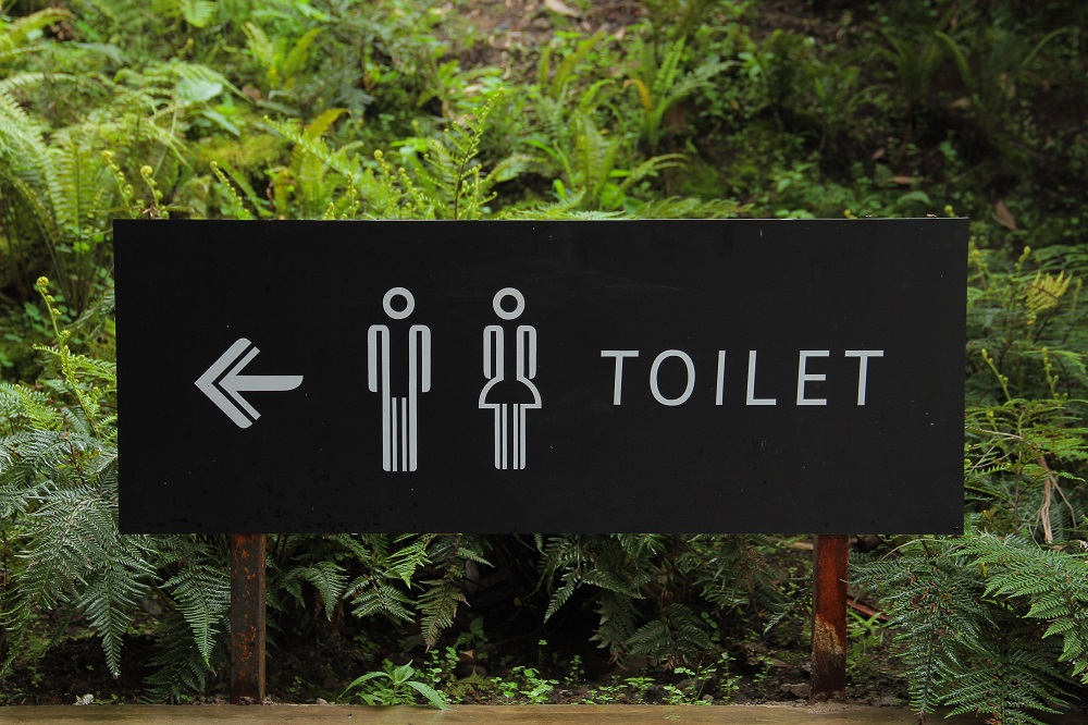 How Many Times Per Day Does the Average Person Pee?